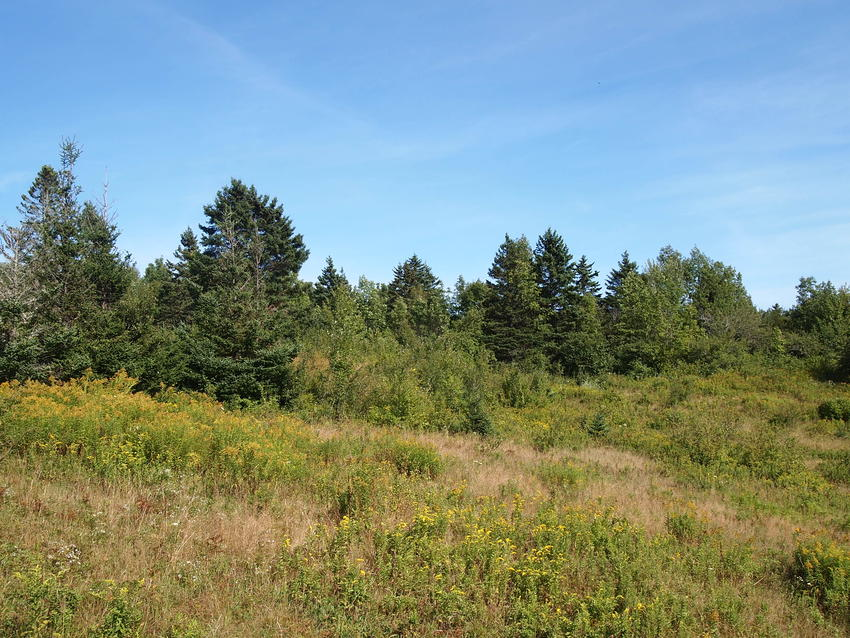 Canadian Land For Sale in Ontario, Nova Scotia, and New Brunswick